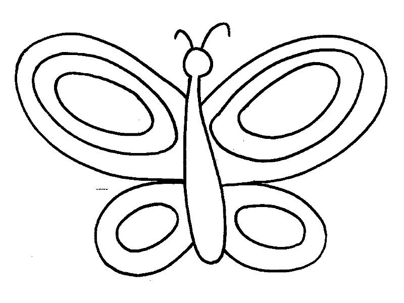 butterfly easy coloring