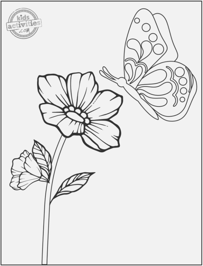 Make your coloring pages for kids colour and print