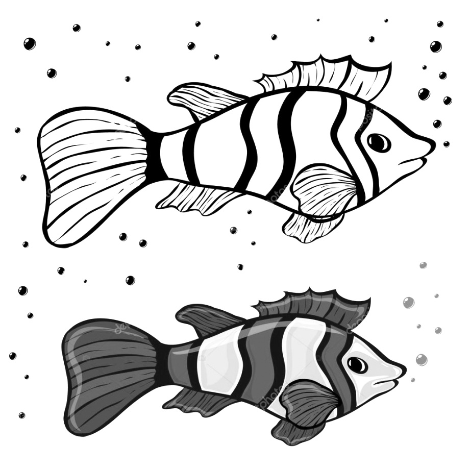 Discover Free fish coloring pages coloring pages printable