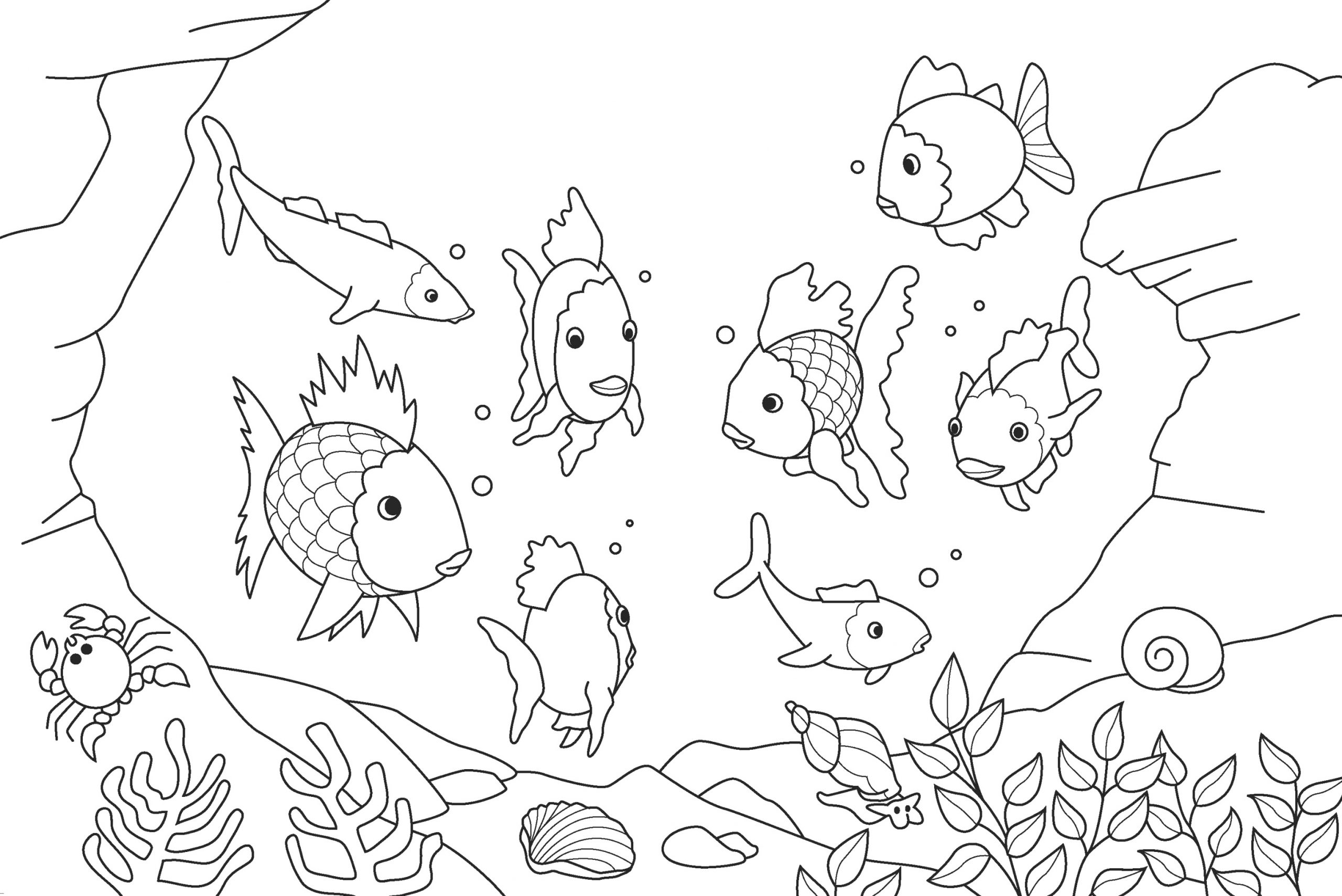 easy fish coloring pages be more creative