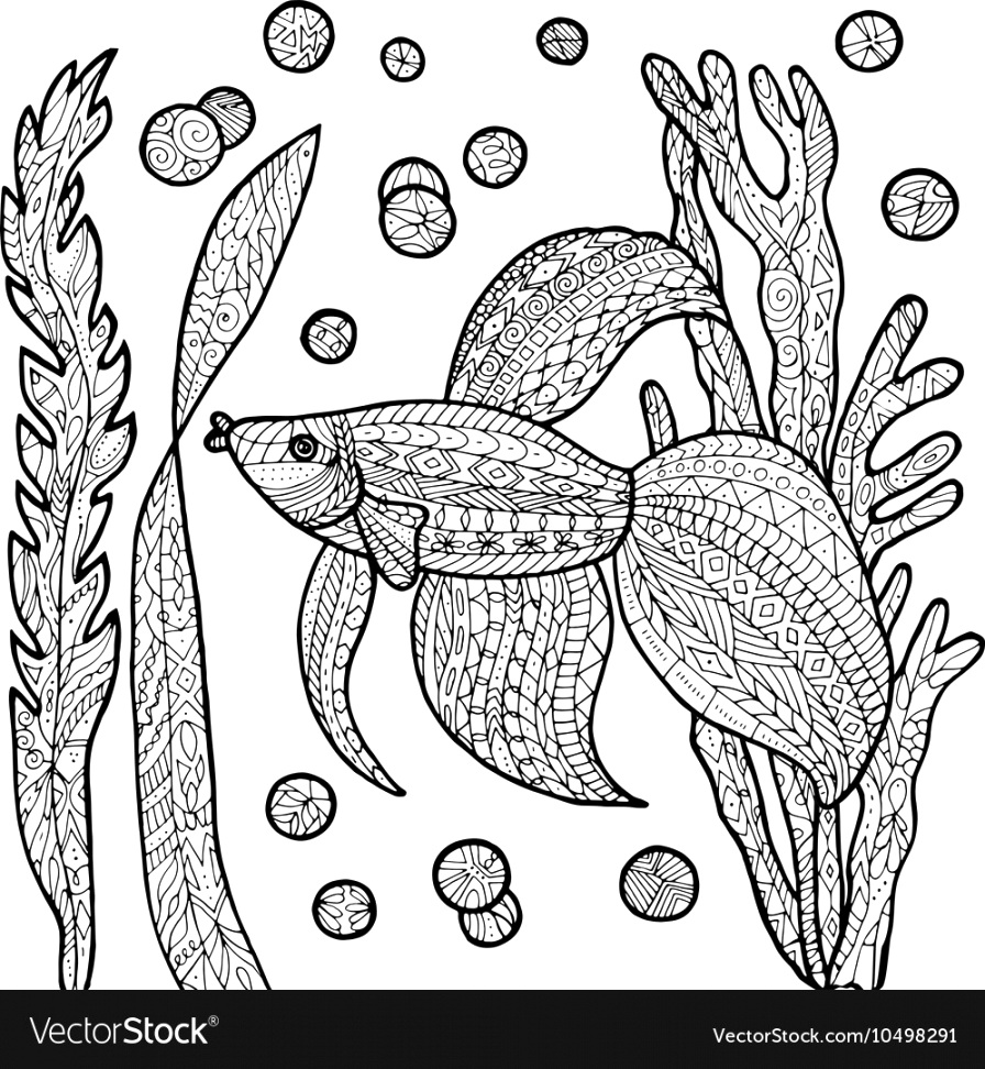 fantastic fish coloring pages to color up