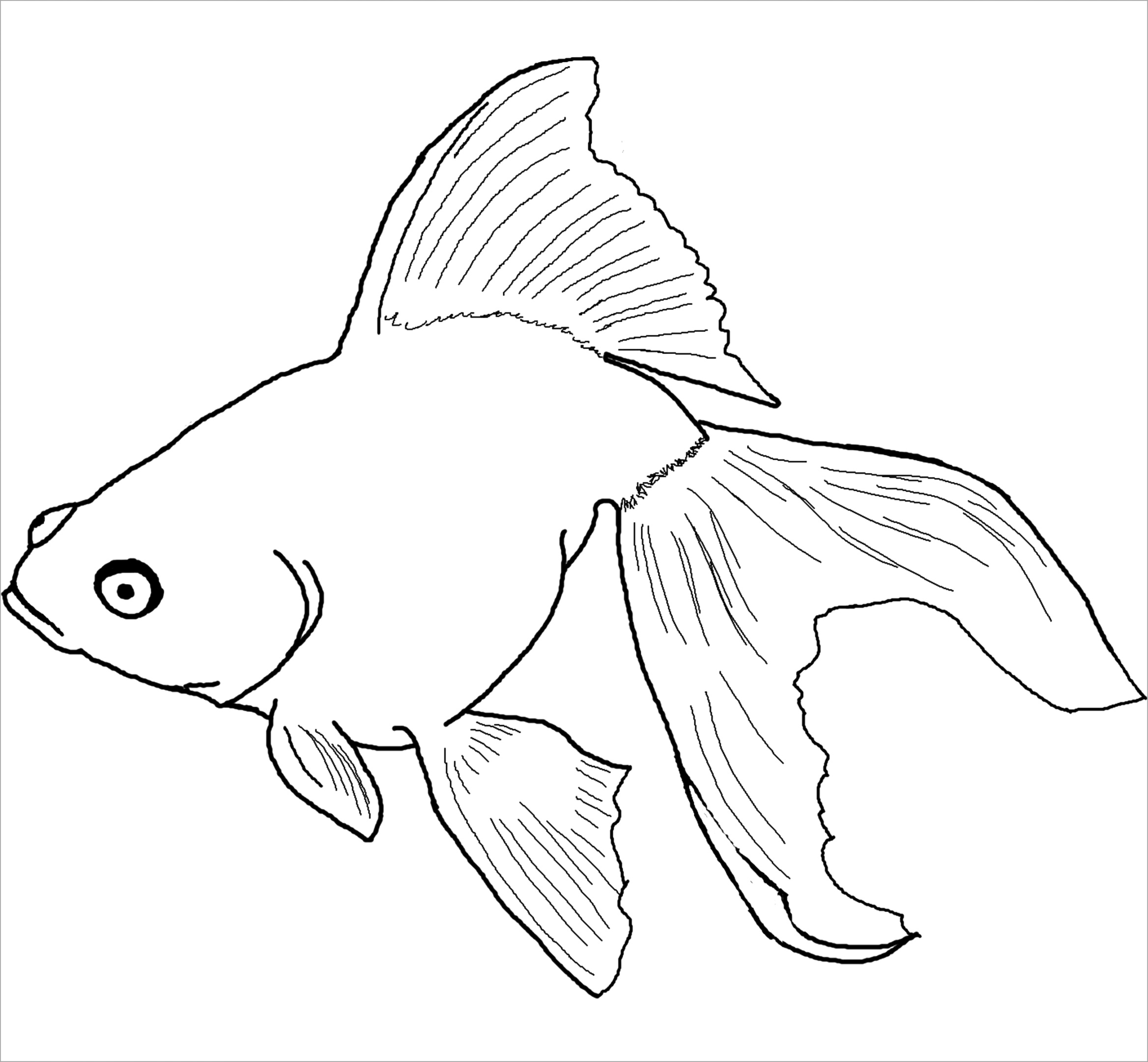 simple fish coloring pages to color free