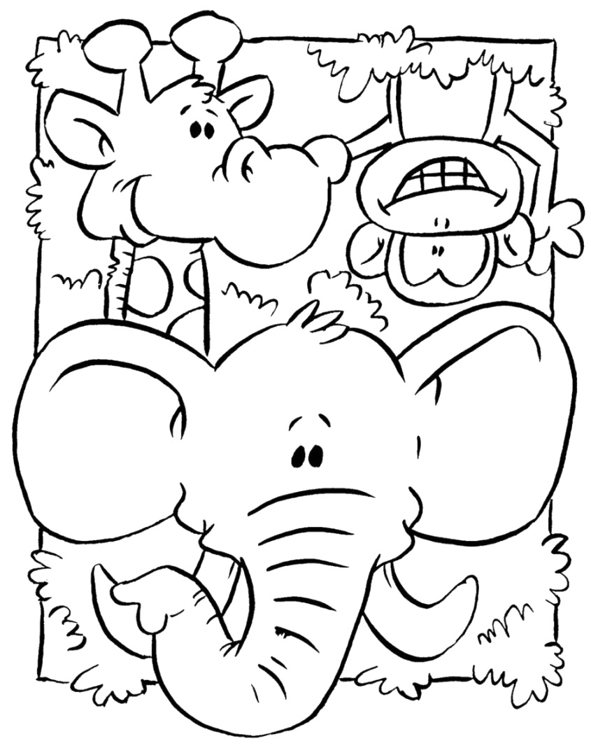 the incredible animal coloring pages to color download