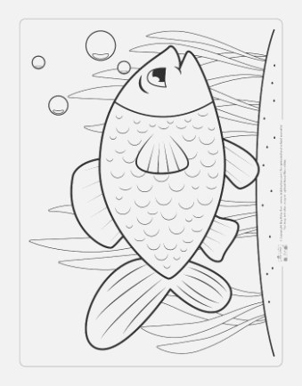 excelent coloring pages for kids for adults and kids