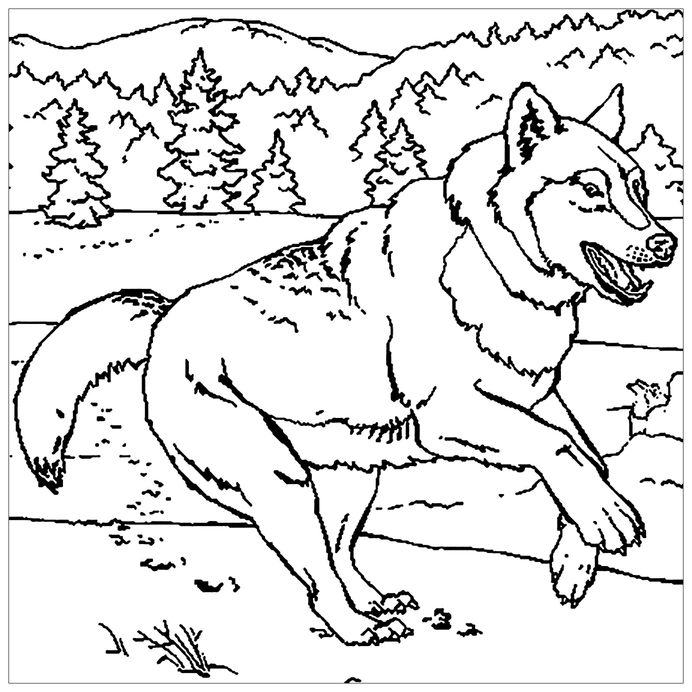 cute wolf coloring pages to print