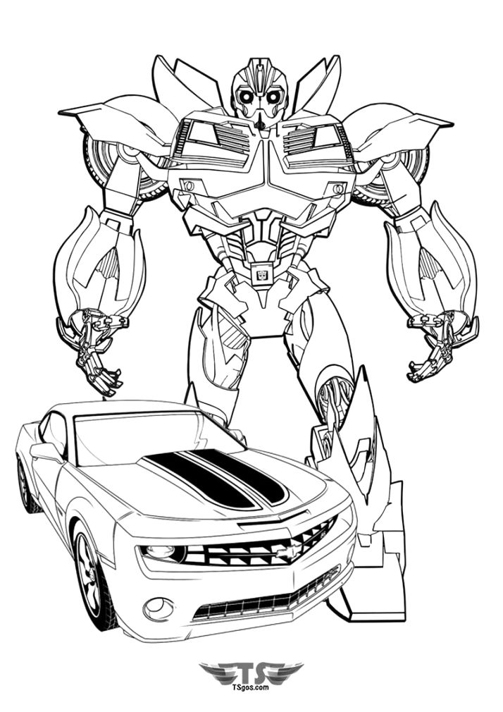 amazing bumblebee coloring pages for kids